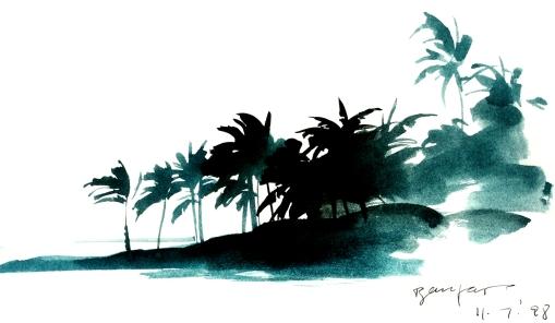 kauai 082